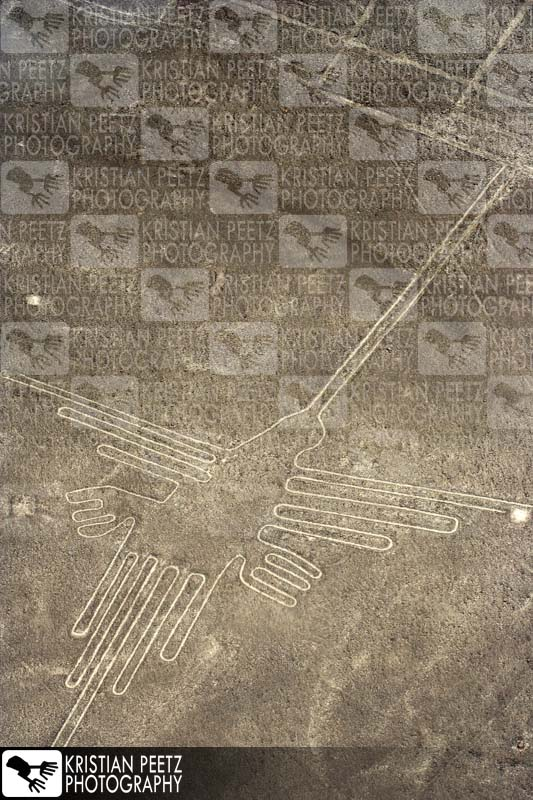 Nasca lines: the hummingbird